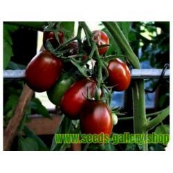 Semillas de tomate BLACK PLUM