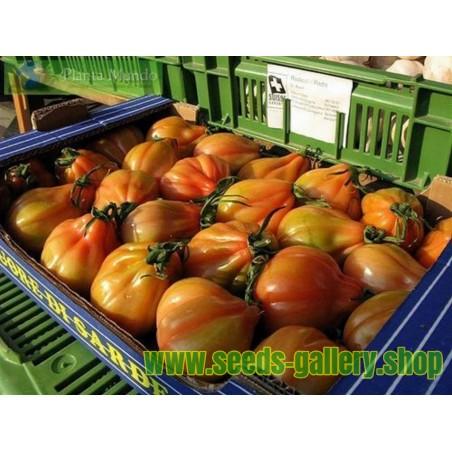 CHARLIE CHAPLIN Tomato Seeds
