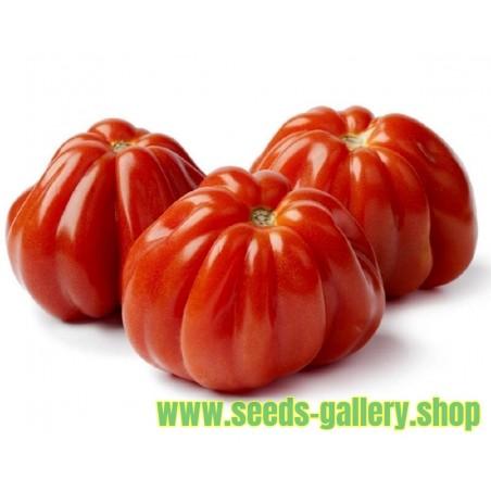 Tomat frön italiensk CUOR DI BUE