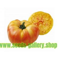Graines de Tomate ANANAS - PINEAPPLE