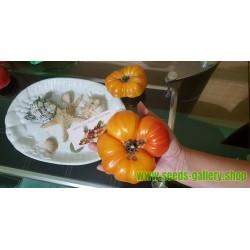 PINEAPPLE Beefsteak Tomato Seeds