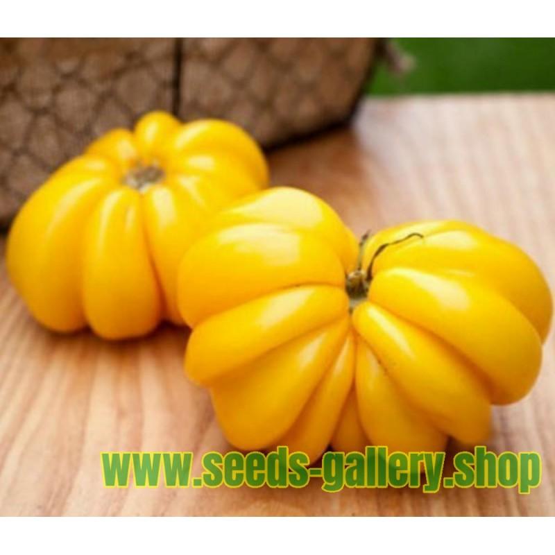 Yellow Ruffled Heirloom Seme Paradajza