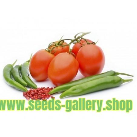 Comment faire pousser des tomates à partir de graines