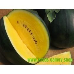 JANOSIK Gelbe Wassermelone Samen