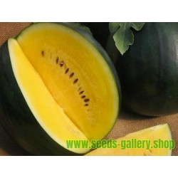 Σπόροι κίτρινο καρπούζι JANOSIK