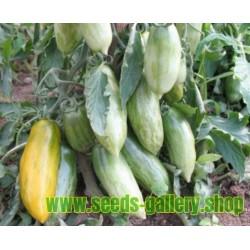 Semillas de tomate GREEN SAUSAGE