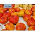 Graines de Tomate ARBUZNYI