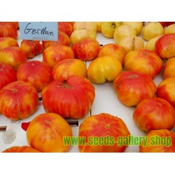 Graines Tomate ancienne OLD GERMAN