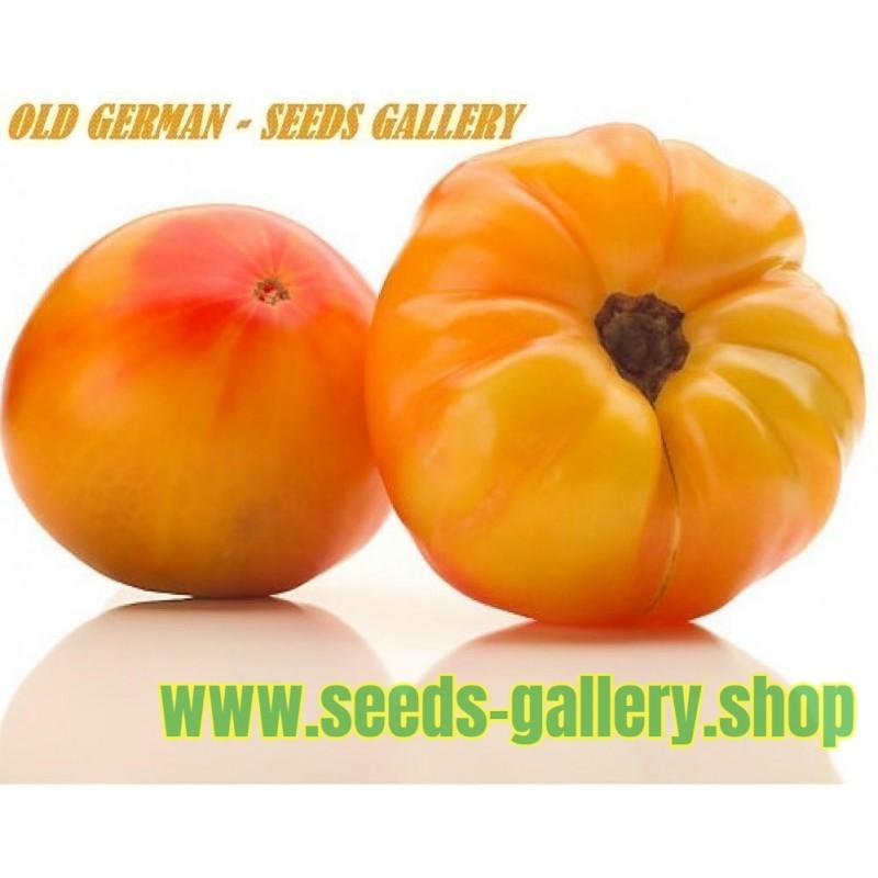 ARBUZNYI Big Green Tomato Seeds