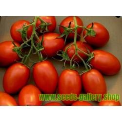 Sementes de tomate ROMA NANO