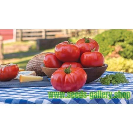 Graines de Tomate beefsteak Marmande