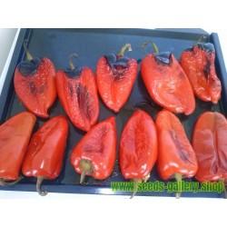 Paprika Orecchio di elefante 1100+ sementi