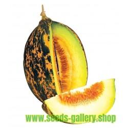 Semi di melone DALAMAN