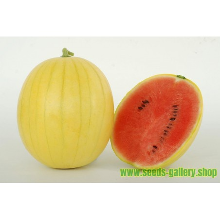 Yellow Skin Watermelon Seeds