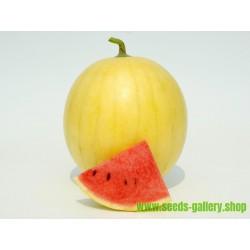 Gul Hud Vattenmelon Frön