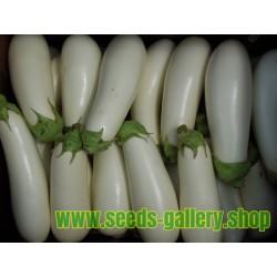 White Eggplant Seeds