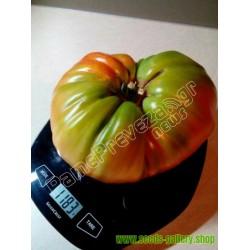 PREVEZA Riesen Beefsteak Griechische Tomatensamen