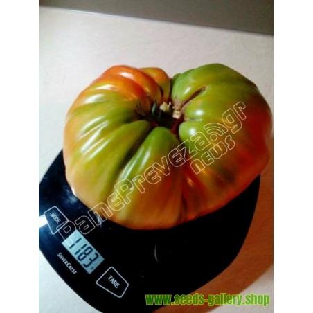 Grekiska Giant Beefsteak Tomatfrön PREVEZA