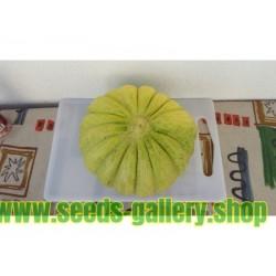 Greece Melon - Green Banana Seeds