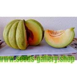 Greece Melon - Green Banana Seeds
