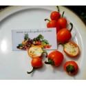 Graines de melon indienne KACHRA (Cucumis callosus)