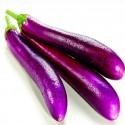Italian Aubergine - Long Purple Seeds