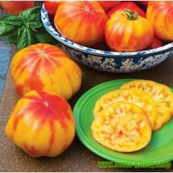Beefsteak Tomato Seeds MR STRIPEY
