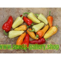 Hot Chilli Pepper Seeds SANTA FE GRANDE - GUERO