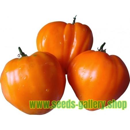 Semillas de tomate GERMAN ORANGE STRAWBERRY