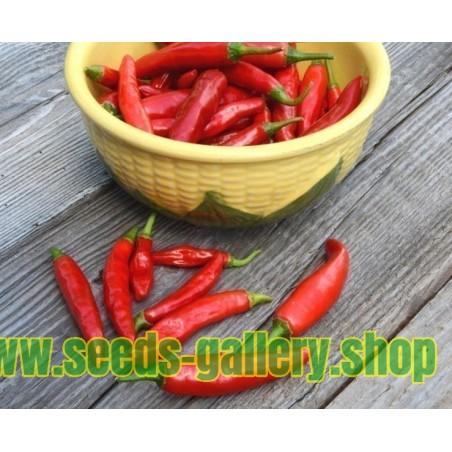 Σπόροι Τσίλι - πιπέρι ONZA