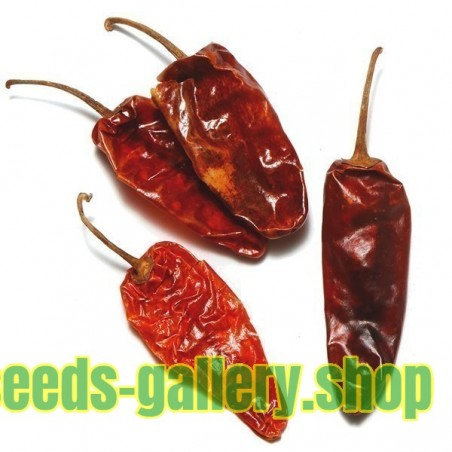 ONZA Hot Chilli Pepper Seeds