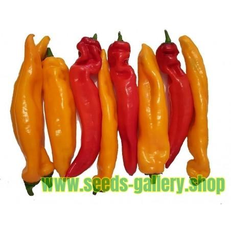 Ramiro sweet Giant pepper Seeds