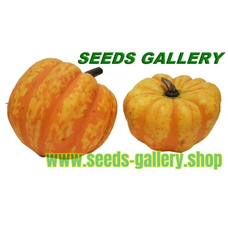 Guava Seeds (psidium guajava)