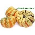 BLACK FUTSU Japanese Pumpkin Seeds