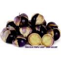 Σπόροι Tomatillo Physalis philadelphica Purple