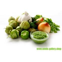Tomatillo Verde Samen - Physalis Ixocarpa