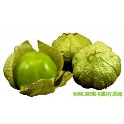 Tomatillo Verde Seeds - Physalis Ixocarpa