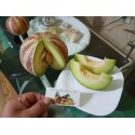 Graines Fruit de la Passion Banane - Taxo