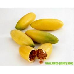 Bananpassionsblomma Fröer