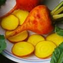 Tomatillo Seme