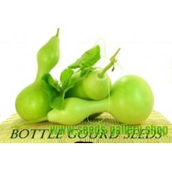 Riesen Flaschenkürbis, Kalebasse Samen
