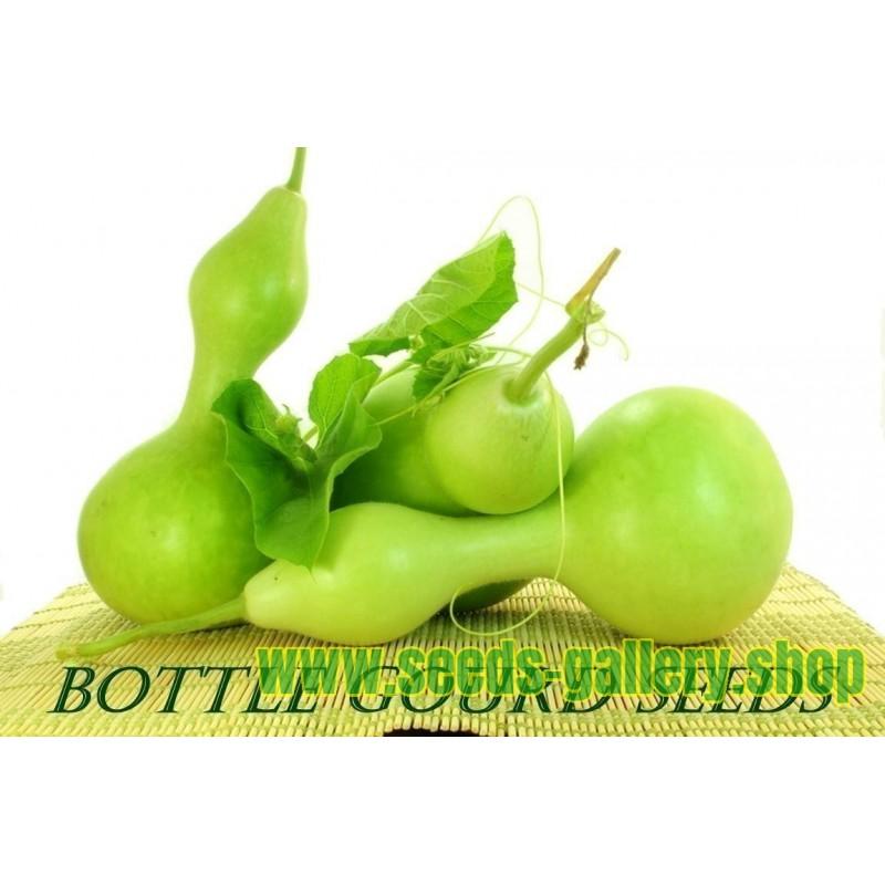 Bottle Gourd Seeds (Lagenaria siceraria)