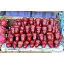 Java Apple Seeds, Rose Apple, Wax Jambu