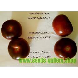 Semillas de tomate Chockmande