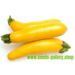 Sementes de Abobrinha Amarela SOLEIL