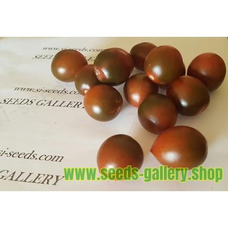 Tomatfröer Chockmato