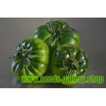Costoluto Pachino - Sic. Heirloom Tomato Seeds