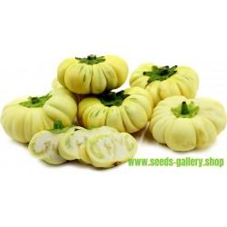 Africki Patlidzan Seme (Solanum aethiopicum)