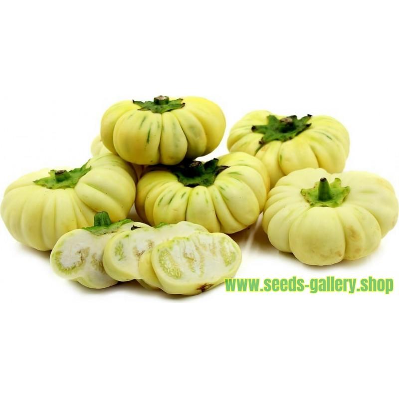 Afrikanische Aubergine Samen (Solanum aethiopicum)