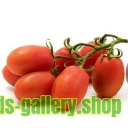 RIO GRANDE Tomaten Samen